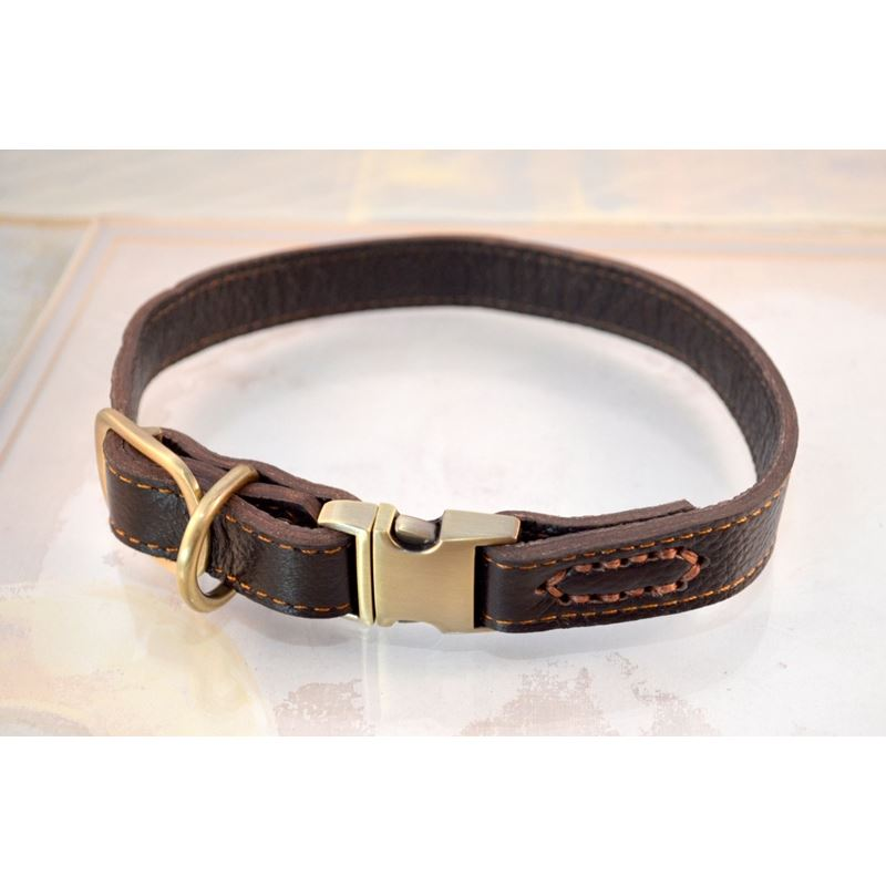 Quick Release Leather Collar